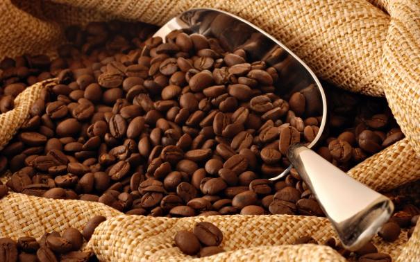 1-3-rahasia-kedai-kopi-sukses-asal-amerika-serikat-1
